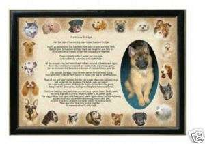 RAINBOW BRIDGE POEM   WHERE PETS GO