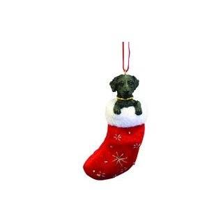Black Labrador Retriever Dog Candy Cane Ornament by Big