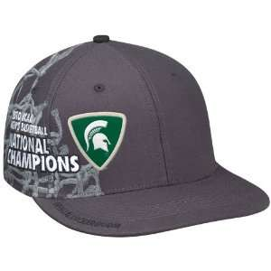 Nike Michigan State Spartans Gray 2010 NCAA Division I Men