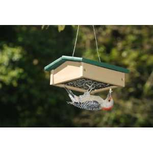 Down Suet Bird Feeder   Hunter Green & Driftwood, Standard Size Suet
